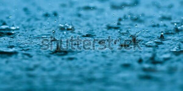 rainwater drops